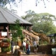 Ugandos lankytinos vietos